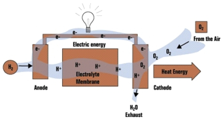 Electricity Generated